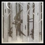 Silk Saw
